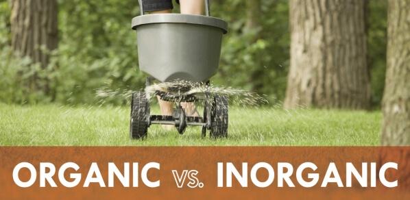 Organic And Inorganic Fertilizers
